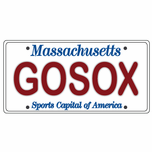 GOSOX License Plate Sticker
