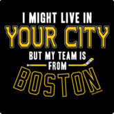 My Hockey Team Is In Boston