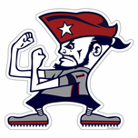 New England Fighting Fan Sticker