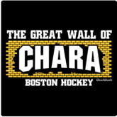 The Great Wall of Chara T-Shirt / Sweatshirt
