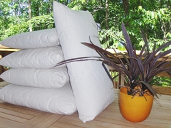 Kapok Pillow  Inserts