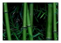 Bamboo Acrylic Wall Art Decor