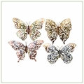 Butterfly Art Decor