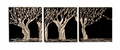 Four Trees Renato Wooden Wall Plaques Set of 3