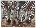Zebra Jungle Repose Metal Wall Art