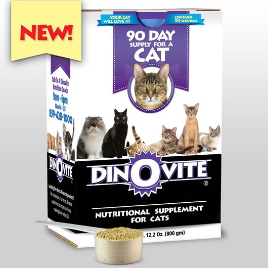 What Do We Think of Dinovite Reviews? Most of the Dinovite reviews I was able to find appeared to be several years old. There was a wide range of reviews from negative to positive. This is average, mediocre really, but the age of them doesn't bode well. Our Dinovite Review. Dinovite is a powdered supplement designed for cats and dogs.