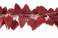 "Red Howlite Magnesite 18x28mm Leaf Beads 15.5"" 21 pcs"