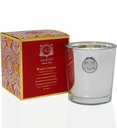 Aquiesse Holiday Winter Currant Candle