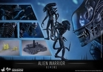 "12"" Aliens Alien Warrior 1/6th Scale Action Figure Hot Toys"