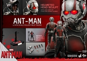 """12"""" Ant-Man 1/6th Scale Action Figure Hot Toys"""