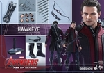 "12"" Avengers Age of Ultron Hawheye 1/6th Scale Action Figure Hot Toys"