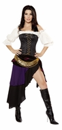 Gypsy Mistress Costume, Adult Women Gypsy Costume, Sexy Halloween Costumes
