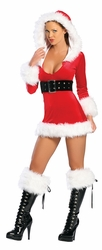 Sexy Santa Costumes,  Santa Costumes for Women, Sexy Exotic Santa Costumes