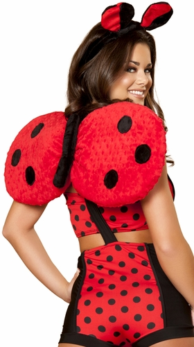 Ladybug Wings, Costume Accessory