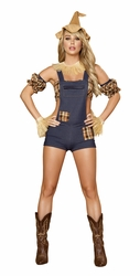 Scarecrow Maiden Costume, Adult Women Halloween, Scarecrow Costume