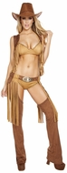 Wild Western Temptress Cowgirl Costume, Cowgirl Costumes, New Cowgirl Costume