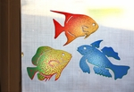 Tropical Fish Screen Magnet Package