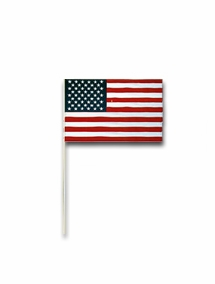 USA Small Stick Flags for Parades 4