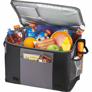 Imprinted 50-Can Food Table Top Cooler - Click to enlarge