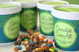 Get Well Ice Cream Collection