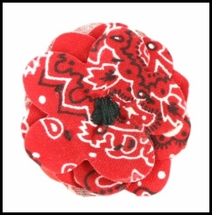 Huckleberry Gentry - Boutonniere   Clip - Red Paisley