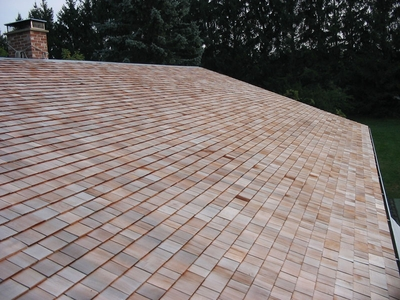 ARMOR SHINGLE ROOF COATING