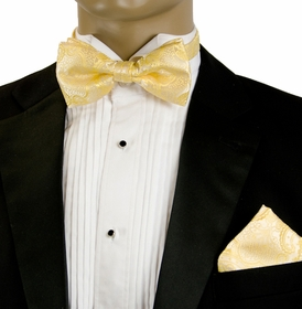 Bow Tie and Pocket Square Set . Golden Paisley (BH848)