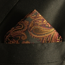 Bronze Paisley Mens Silk Pocket Square (H630)