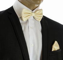 Champagne Bow Tie and Pocket Square Set (BT100-H)