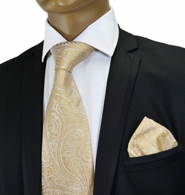 Champagne Paisley Crystal Silk Tie by Verse 9