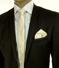 Champagne Paisley SLIM Tie Set by Paul Malone (Slim570H)