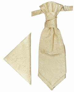 Champagne Paul Malone Cravat & Pocket Square (PLV26H)
