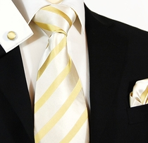 Elegant Gold Paul Malone Silk Tie Set (474CH)