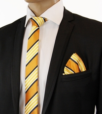 Gold a. Bronze Striped Slim Tie Set by Paul Malone