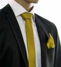 Gold and Brown SLIM Tie Set by Paul Malone (Slim398H)