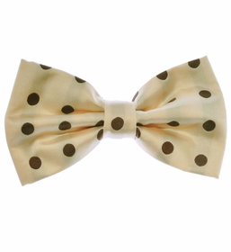 Men's Bow Tie and Pocket Square . Cream with Brown Polka Dots (BT487-G)