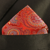 Mens Silk Pocket Square Handkerchief (H696)