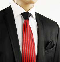 Red a. Black Contrast Knot Silk Tie by Steven Land