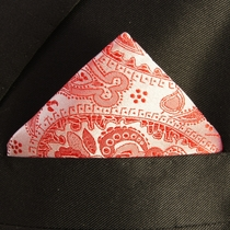 Red Paisley Mens Silk Pocket Square (H338)