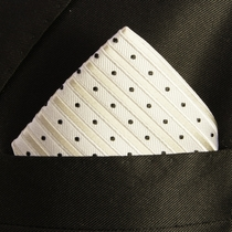 Silver and Black Silk Pocket Square (H423)