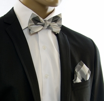 Silver Gray Silk Bow Tie and Pocket Square Set (BT558H