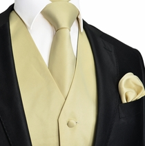 Solid Beige Tuxedo Vest and Accessories