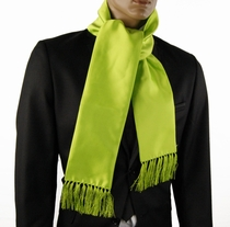Solid Lime Green Fashion Scarf (SC100-F)