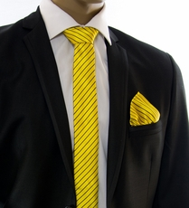 Yellow and Dark Brown Striped Slim Tie Set by Paul Malone (Slim564H)