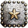 "BS9287-1 SRTPGP  1"" Gold Star Berry Square Concho"