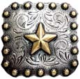 "BS9287-2 SRTPGP 1-3/8"" Gold Star Berry Concho"