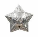 FA5029 SP Polished Silver Star Windrose Concho 1""