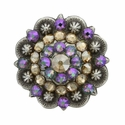 Swarovski Rhinestone Crystal Antique Silver Berry Concho - Golden Shadow and Crystal Paradise Shine