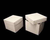 "1250x2639 - 12"" x 12"" x 10"" White/White Lock & Tab Box Set, without Window, 50 COUNT"
