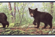 Black Bears Wallpaper Border HB112103b